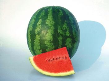 watermelon shiny boy