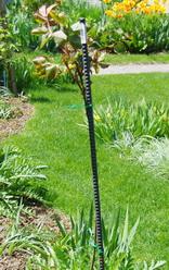 tree rose stake